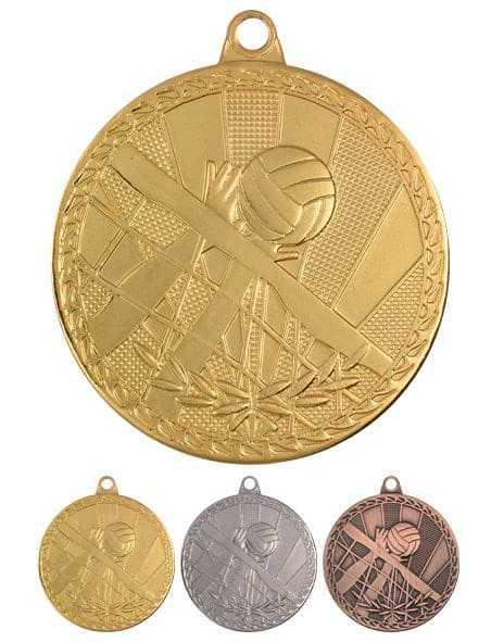 Медаль Волейбол MV17 G